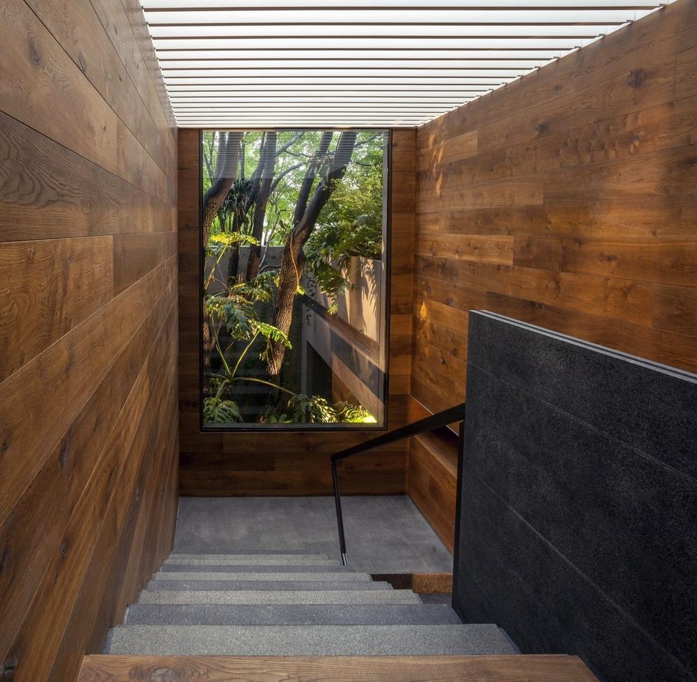 Дом посреди сада в Мехико